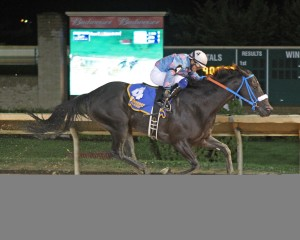 Candy Man's Girl wins the Cavada. Photo by Coady Photography.