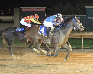 Greenway Court won the WV Dash for Cash Breeders Classic. Runnin'toluvya won the WV Vincent Moscarelli Memorial Breeders Classic. Photo by Coady Photography.