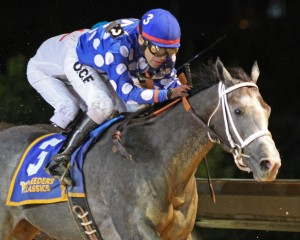 Runnin'toluvya won the WV Vincent Moscarelli Memorial Breeders Classic. Photo by Coady Photography.